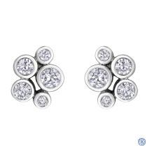 Diamond Envy 10kt White Gold And Diamond Earrings